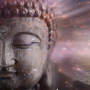 Metaphysical-1-Buddha-600