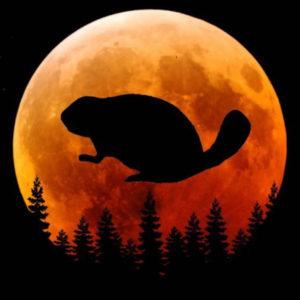 Beaver Full Moon